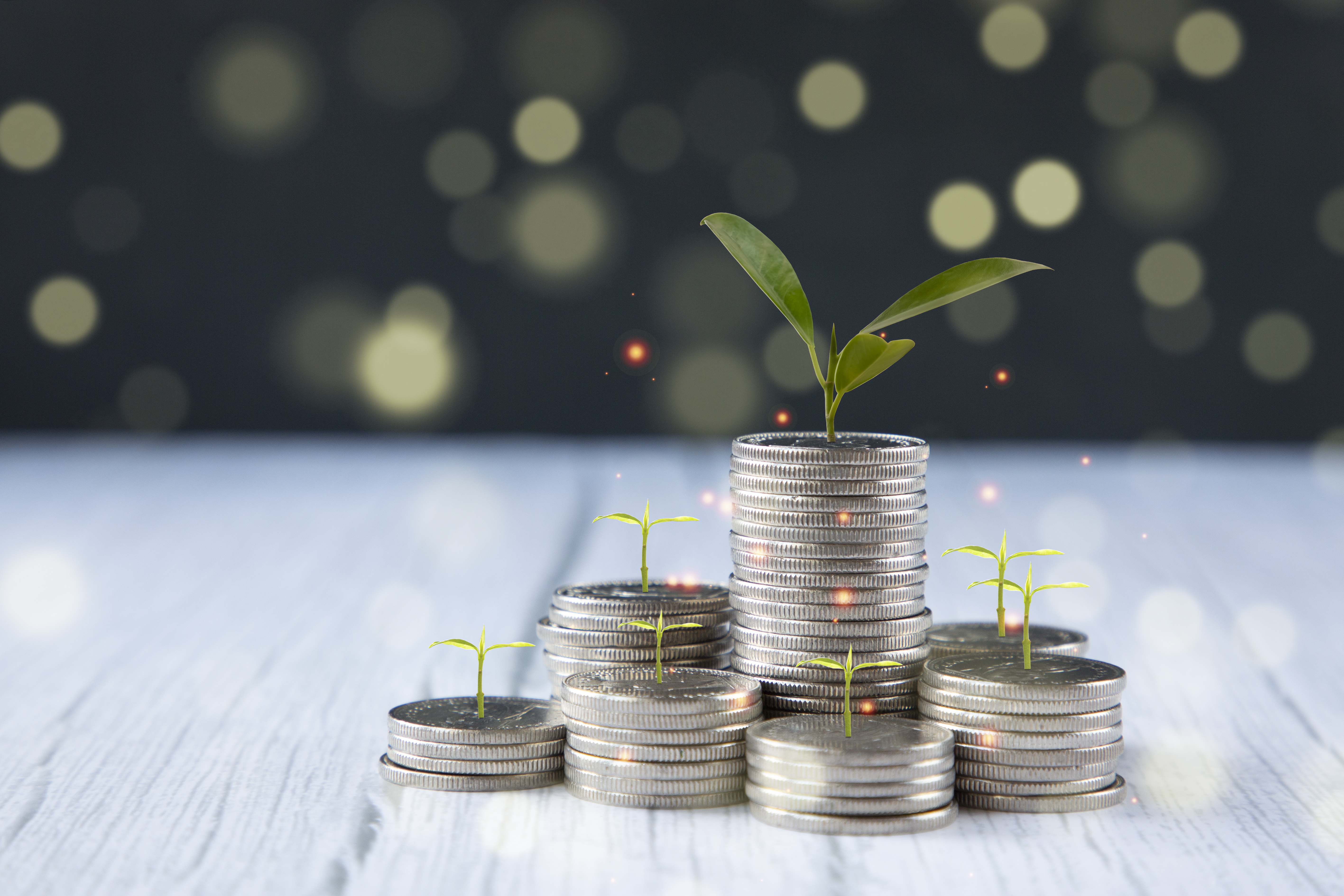 bigstock-Coins-Stack-And-Leaf-With-Lin-400707752