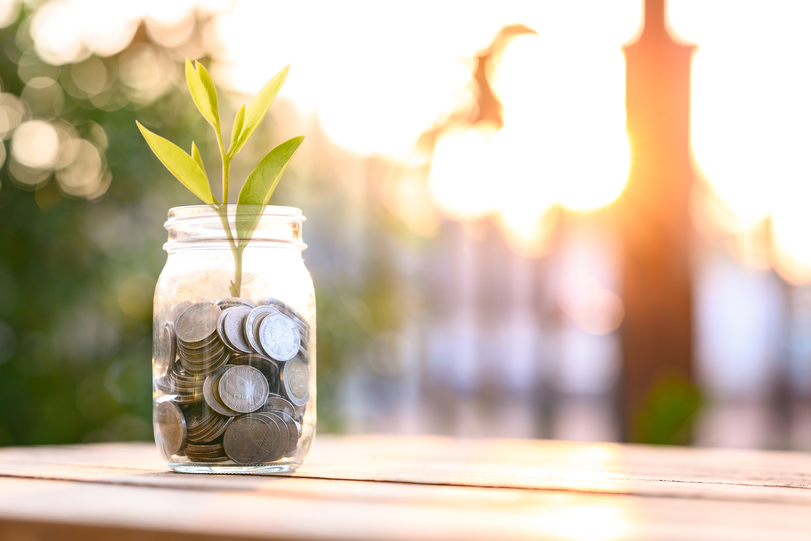 bigstock-Growing-Money-Business-Financ-412370782